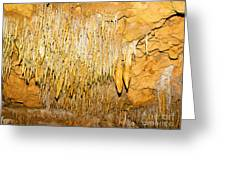 Stalactite Formations In Florida Greeting Card