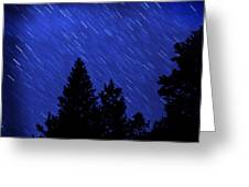 Star Trails In Night Sky Greeting Card by Lane Erickson