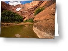 Stevens Arch - Escalante River - Utah Greeting Card