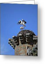 Storks On Top Of Valdecorneja Castle Greeting Card