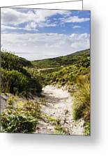 Strahan Coast Landscape Winding To The Ocean Greeting Card