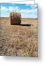 Straw Bales At A Stubbel Field Greeting Card