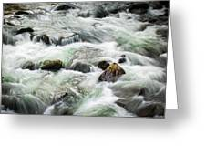 Stream Great Smoky Mountains  Greeting Card