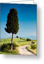 Stroll On Farm Road Greeting Card