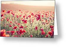 Stunning Poppy Field Landscape Under Summer Sunset Sky With Cros Greeting Card