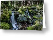 Sul Duc Creek Greeting Card