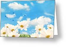 Summer Daisies Greeting Card