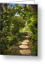 Summer Garden And Path Greeting Card by Elena Elisseeva