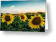 Sister Sunflowers Greeting Card