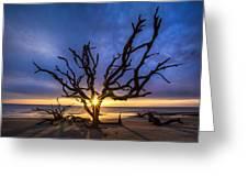 Sunrise Jewel Greeting Card by Debra and Dave Vanderlaan