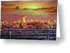 Sunrise Vineyard Greeting Card