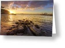 Sunset Light Greeting Card by Debra and Dave Vanderlaan
