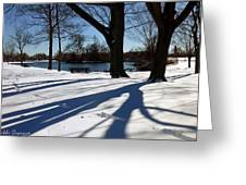 Sunshine And Shadows Greeting Card