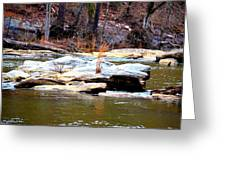 Sweetwater Creek Greeting Card