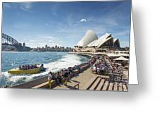 Sydney Harbour In Australia By Day Greeting Card