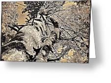 Symbiosys Greeting Card