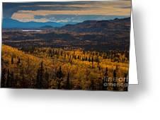 Taiga In Fall Greeting Card