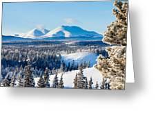 Taiga Winter Snow Landscape Yukon Territory Canada Greeting Card
