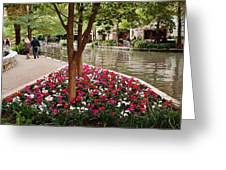 Take The Scenic Route Greeting Card