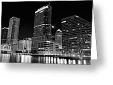 Tampa Black And White  Greeting Card