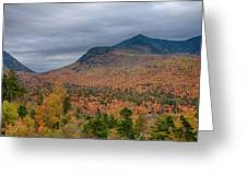 Tapestry Of Fall Colors Greeting Card