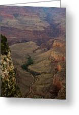 The Awe Of Nature Greeting Card