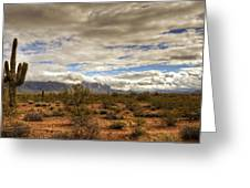 The Desert Southwest  Greeting Card