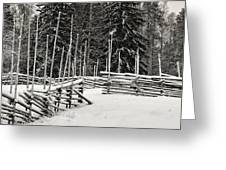 The Fence Of Kovero Greeting Card