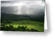 The Green Valley Surrounding Hanalei Greeting Card