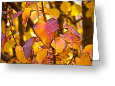 The Heart Of Fall Greeting Card