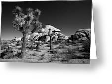The Joshua Tree Greeting Card