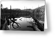 The Mirror Pool Greeting Card