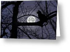 The Moon Watcher Greeting Card