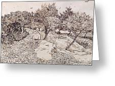 The Olive Trees Greeting Card