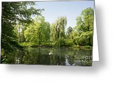 The Pool Central Park Greeting Card