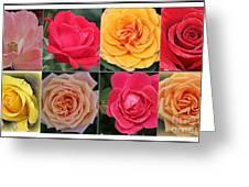 Spring Time Roses Greeting Card