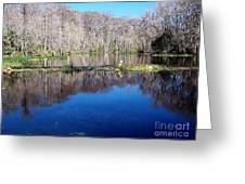 River - Reflection Greeting Card