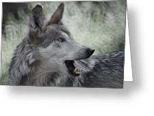 The Wolf 4 Greeting Card