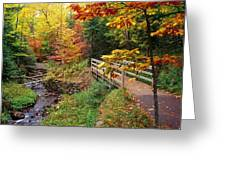 There Is A Harmony In Autumn Greeting Card