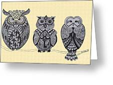 Three Owls On A Branch Greeting Card