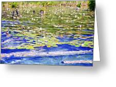 Torch River Water Lilies Greeting Card