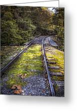 Tracks Along The River Greeting Card