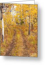 Trail In Golden Aspen Forest Greeting Card