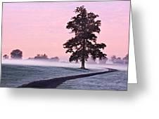 Tree At Dawn / Maynooth Greeting Card