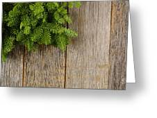 Tree Branch On Rustic Wooden Background Used For Christmas Decor Greeting Card