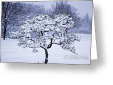 Tree Frosting Greeting Card