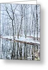 Tree Line Reflections In Lake During Winter Snow Storm Greeting Card