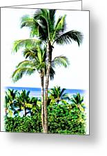 Tropical Palm Trees Greeting Card
