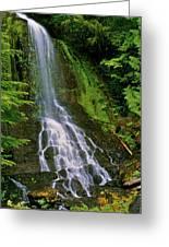 Twin Falls Creek Mount Rainier Greeting Card