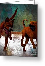 Two Dogs Greeting Card